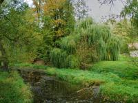 rameno řeky - Prodej domu v osobním vlastnictví 324 m², Vodňany