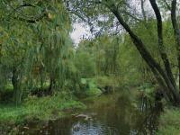 řeka - Prodej domu v osobním vlastnictví 324 m², Vodňany