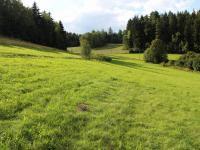 Prodej pozemku 37901 m², Plavy
