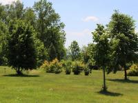 Prodej chaty / chalupy 160 m², Bulovka