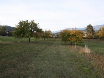 Prodej pozemku 7763 m², Český Dub