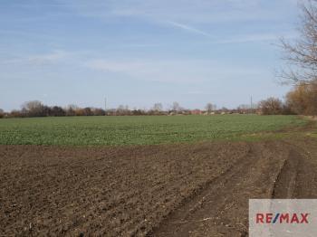 Prodej pozemku 22130 m², Velim