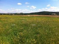 Prodej pozemku 655 m², Útušice