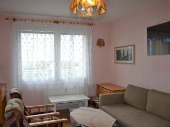 Pronájem bytu 1+1 v osobním vlastnictví 47 m², Plzeň