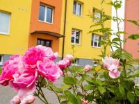 Zadní pohled 3 (Prodej bytu 2+1 v osobním vlastnictví 59 m², Náměšť nad Oslavou)