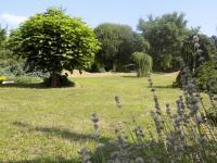 Prodej pozemku 2638 m², Brno
