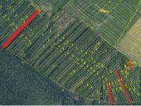 Prodej pozemku 8414 m², Vlastiboř