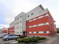 Parkování - Prodej bytu 2+1 v osobním vlastnictví 149 m², Ostopovice