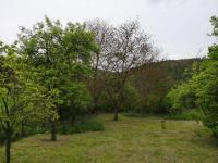 Zadní část pozemku - Prodej pozemku 2173 m², Bílovice nad Svitavou