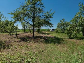 Prodej pozemku 303 m², Šlapanice