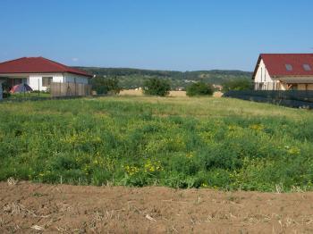 Prodej pozemku 5000 m², Pasohlávky