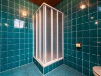 sprchový kout - Prodej domu v osobním vlastnictví 287 m², Brno