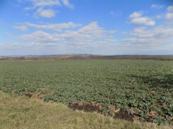 Prodej pozemku 1044 m², Vojkovice