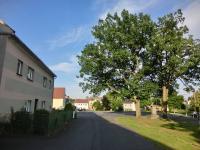 pohled na dům (Prodej domu v osobním vlastnictví 250 m², Otročín)
