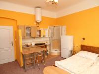 Pronájem bytu 1+kk v osobním vlastnictví, 25 m2, Karlovy Vary