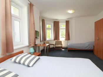 Prodej penzionu 360 m², Nové Hamry