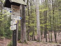 Naučná stezka Voděradské bučiny (Prodej pozemku 1233 m², Jevany)