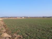 Prodej pozemku 91250 m², Obrubce