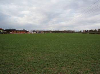 Prodej pozemku 882 m², Přelouč