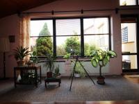 Prodej domu v osobním vlastnictví 262 m², Poděbrady