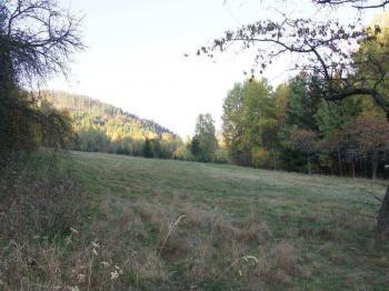 Prodej pozemku 7739 m², Karlovy Vary