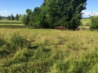 Prodej pozemku 1198 m², Řitonice