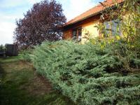 Prodej domu v osobním vlastnictví 442 m², Bubovice