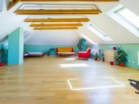 velký pokoj (Prodej domu v osobním vlastnictví 384 m², Zápy)