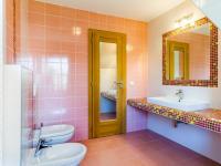 koupelna v patře (Prodej domu v osobním vlastnictví 384 m², Zápy)