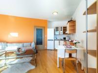 Obývací pokoj + kk (Prodej bytu 2+kk v osobním vlastnictví 43 m², Praha 5 - Motol)