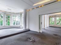 Velkorysé reprezentativní prostory - Pronájem domu v osobním vlastnictví 550 m², Praha 10 - Vršovice