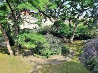 Zahrada - Pronájem domu v osobním vlastnictví 550 m², Praha 10 - Vršovice