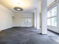 Velkorysé pracovní prostředí - Pronájem domu v osobním vlastnictví 550 m², Praha 10 - Vršovice