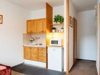 kuchyňka ve studiu na pronájem - Prodej penzionu 460 m², Špindlerův Mlýn