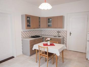 kuchyně 1.byt - Prodej domu v osobním vlastnictví 300 m², Sokolov