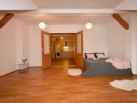 Současná podoba obytné místnosti - Prodej bytu 1+1 v osobním vlastnictví 59 m², Zábřeh