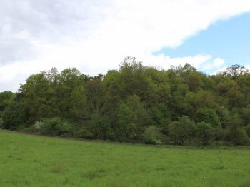 Prodej pozemku 43866 m², Bžany
