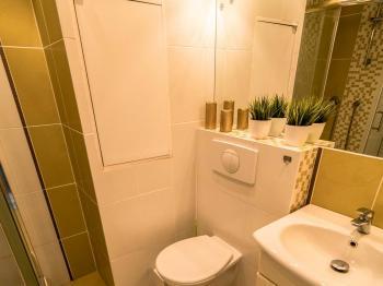 Pronájem bytu 2+kk v družstevním vlastnictví 41 m², Teplice