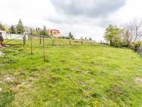 Pohled od domu na pozemek - Prodej domu v osobním vlastnictví 162 m², Nová Ves v Horách