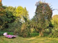 zahrada ... (Prodej domu v osobním vlastnictví 84 m², Habry)