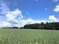 Fotografie lokality (Prodej domu v osobním vlastnictví 90 m², Pohleď)