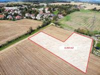 Prodej pozemku 4243 m², Lípa