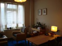 Obývací pokoj (Pronájem bytu 2+kk v osobním vlastnictví 48 m², Praha 3 - Žižkov)