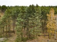 Prodej pozemku 2461 m², Oleško