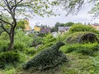 Zahrada - Prodej domu v osobním vlastnictví 83 m², Luby