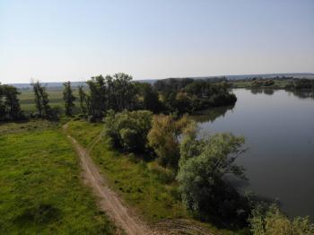 Prodej pozemku 1420 m², Kosořice