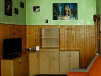 obývací pokoj - Prodej bytu 2+kk v osobním vlastnictví 43 m², Praha 3 - Žižkov