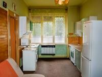 kuchyň - Prodej bytu 2+kk v osobním vlastnictví 43 m², Praha 3 - Žižkov