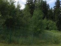 Prodej pozemku 1258 m², Sadov