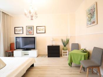 Pronájem bytu 2+1 v osobním vlastnictví, 51 m2, Karlovy Vary